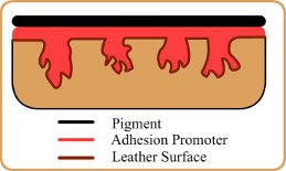 Adhesion Promoter (creases)