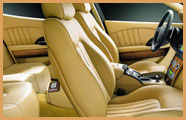 Leather care Interior Repair & Restoration